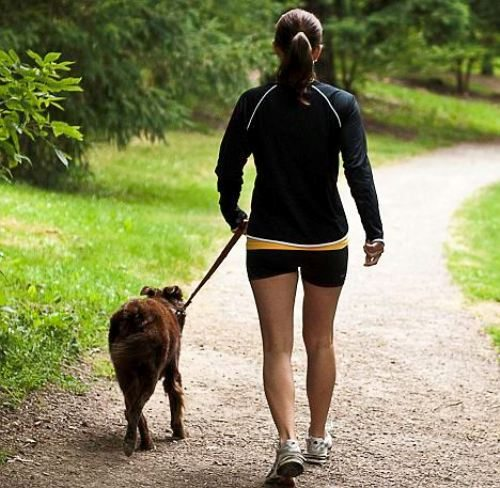 Woman walking her dog in the park