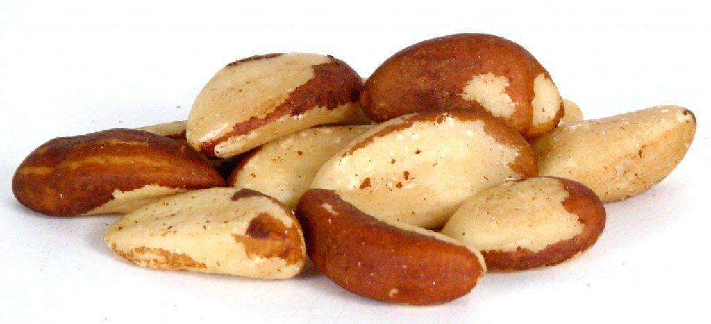 Brazil-Nuts-1024x467