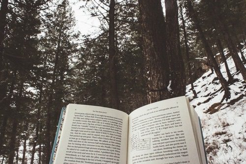 book-forest-tumbler-tumblr-Favim.com-3979705